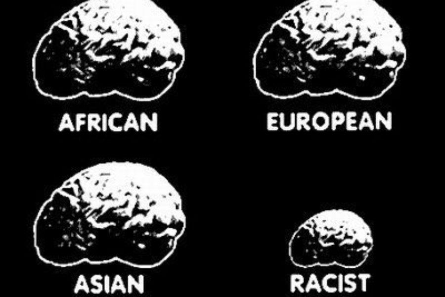 Torna di 'moda' il razzismo….Perché? Quali le cause?